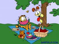 Garfield picnic